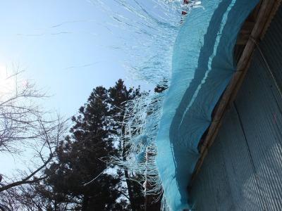 真冬の村 3:ミッション_a0180681_210874.jpg