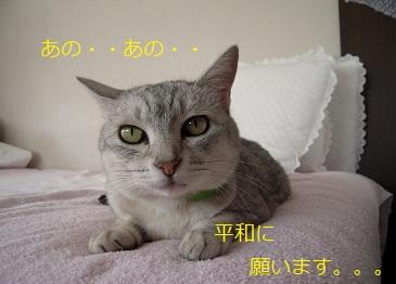 c0139488_15563086.jpg