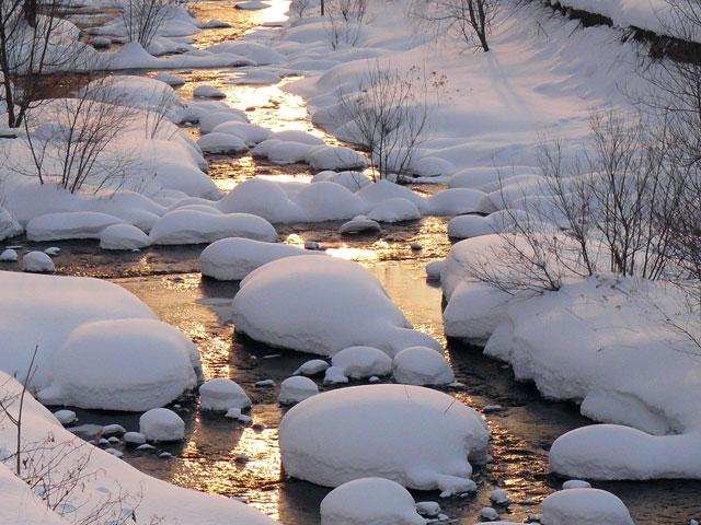 朝日が川面を照らす_d0162994_8582343.jpg