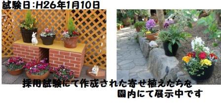 f0203094_13511715.jpg