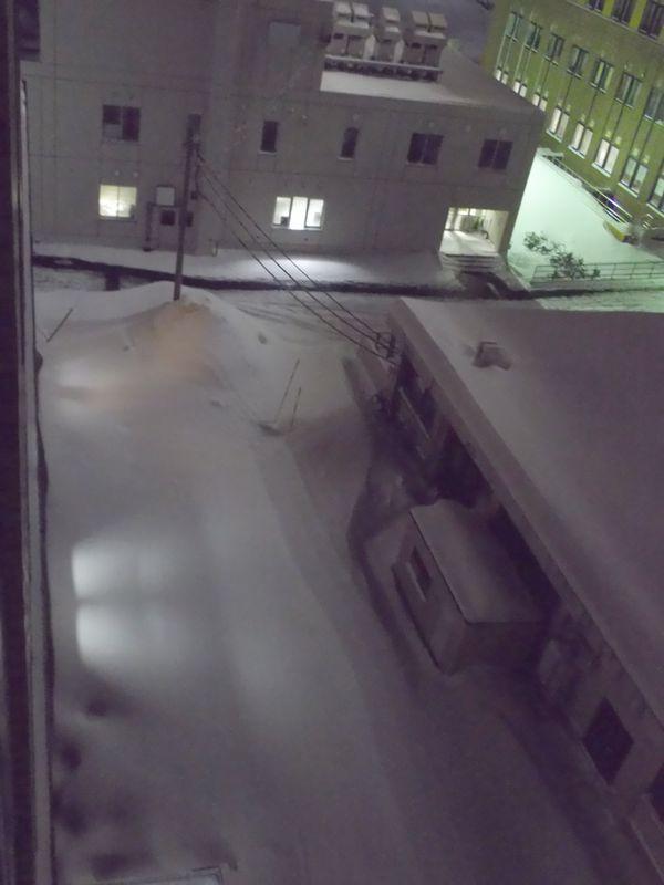 気温低下からいきなりの豪雪_c0025115_2023984.jpg