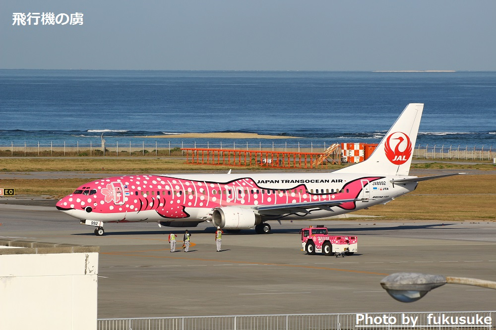 JTAの国際線チャーター便 さくらジンベイで台北へ_b0313338_15220361.jpg