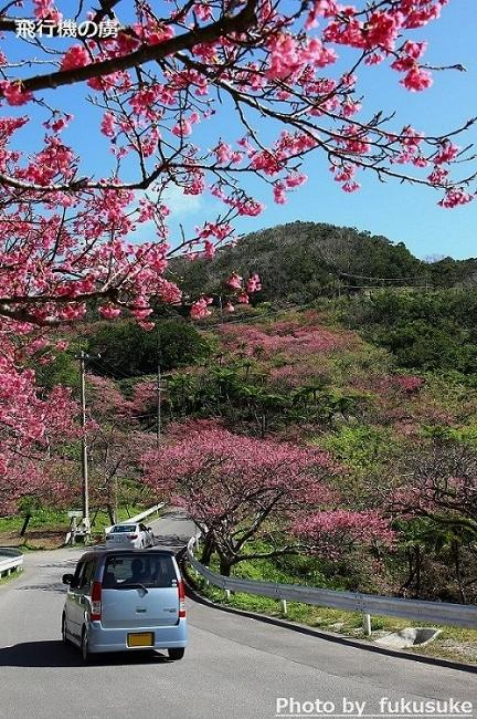 JTAの国際線チャーター便 さくらジンベイで台北へ_b0313338_18240929.jpg