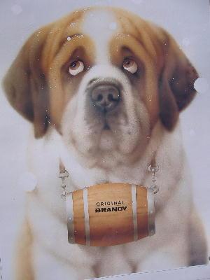 【暦】二月の犬さん・猫さん_c0328479_19493514.jpg