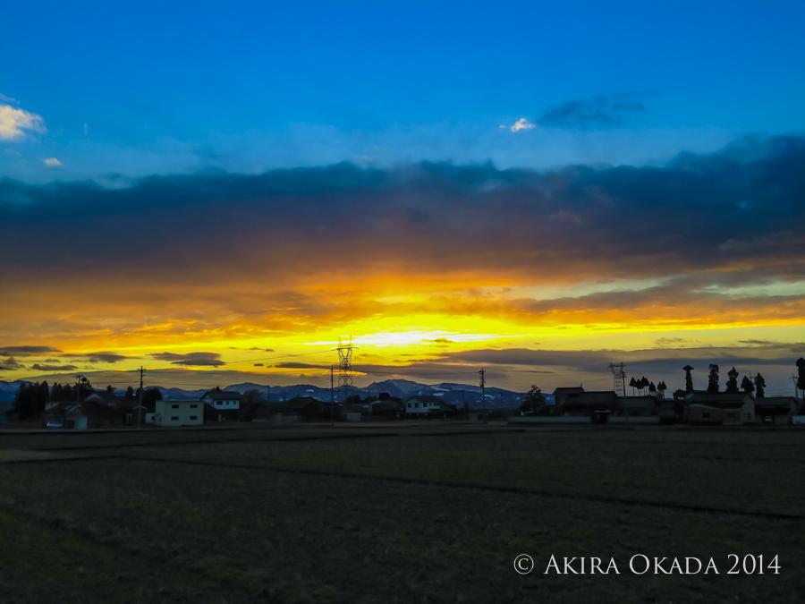 #51 僕は富山にはじめて来て、庭に生えている木を見て(写真右)焼き鳥みたいな木だと思った_c0315588_04353371.jpg