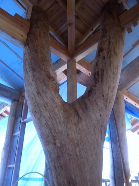 ただいま建築中!新棟からの風景_b0218062_2055535.jpg