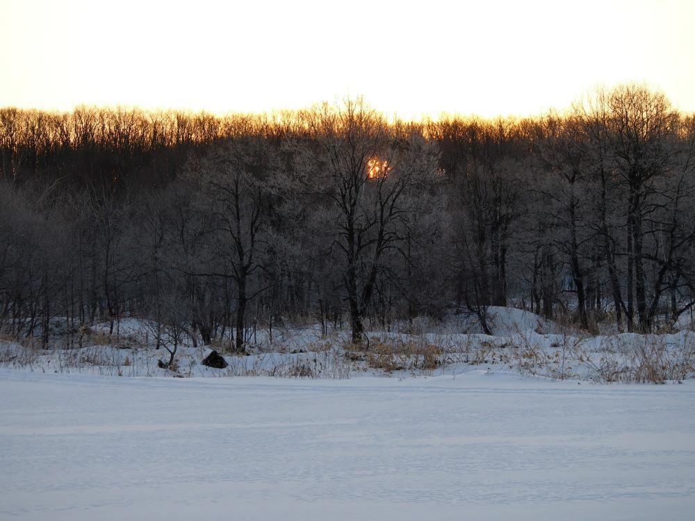 霧氷ツアーの帰りに見た・・筋状の雲から頭を出す日高山脈_f0276498_13505932.jpg