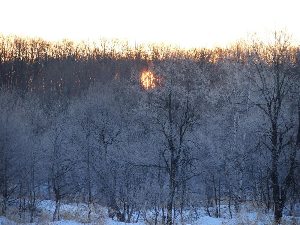 霧氷ツアーの帰りに見た・・筋状の雲から頭を出す日高山脈_f0276498_13513752.jpg