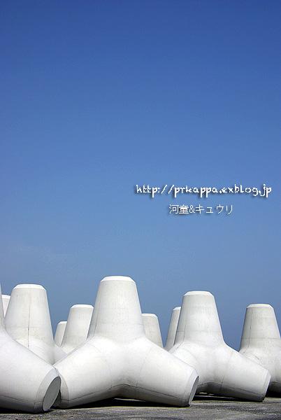 b0295842_20511754.jpg