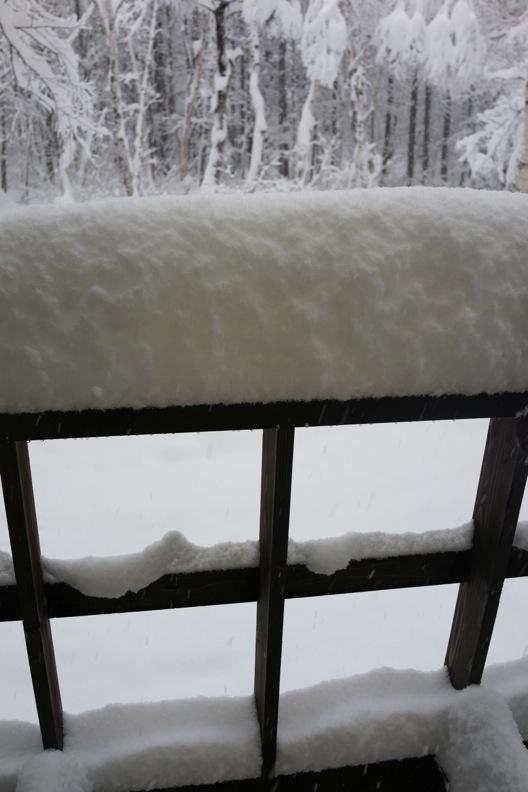 正月/雪_d0133581_21231454.jpg