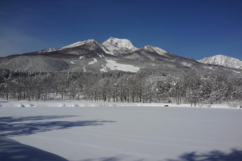 正月/雪_d0133581_21292330.jpg