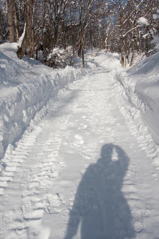 正月/雪_d0133581_21292334.jpg