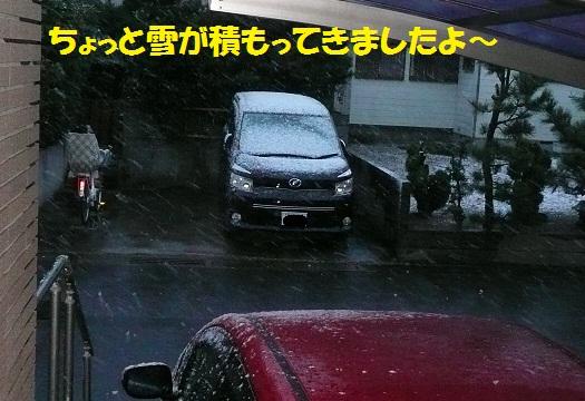 f0121712_16594688.jpg
