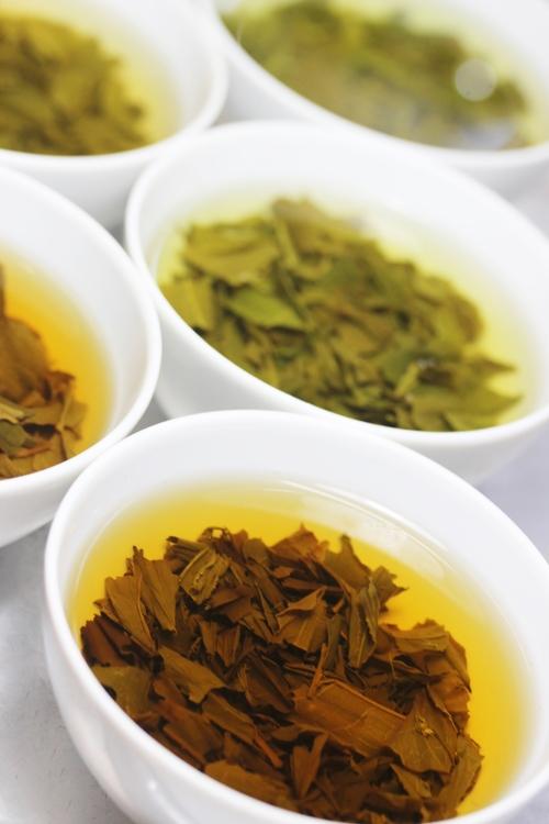 知る!楽しむ!日本茶の魅力 2月_b0220318_179052.jpg