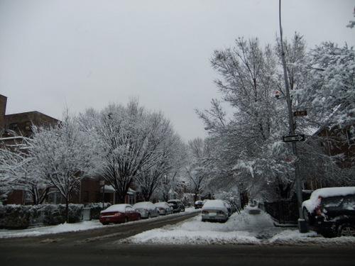 またまた大雪_c0064534_9563297.jpg
