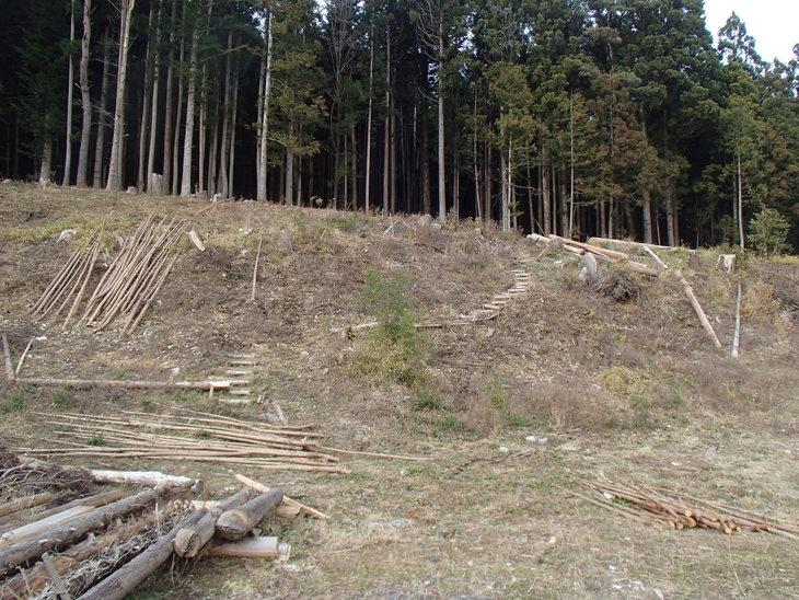 雄勝に東屋用の追加木材採り_e0332549_14165116.jpg