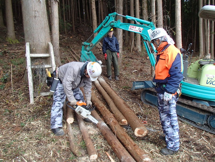 雄勝に東屋用の追加木材採り_e0332549_14245780.jpg