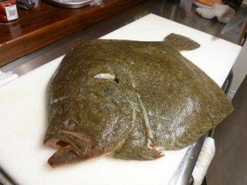 今日の魚です。_e0252966_14241886.jpg
