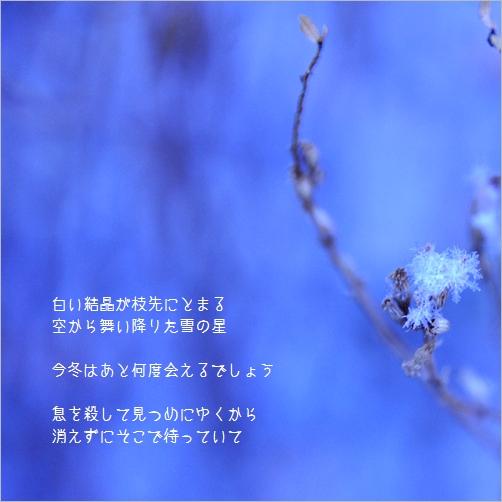 b0154475_22364558.jpg
