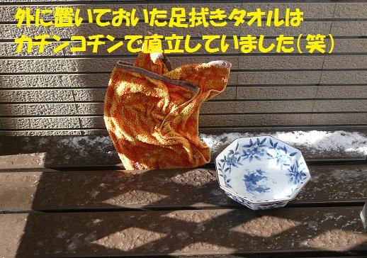 f0121712_1411932.jpg
