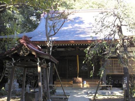 日吉本町〜高田を訪ねて_b0228416_19002511.jpg