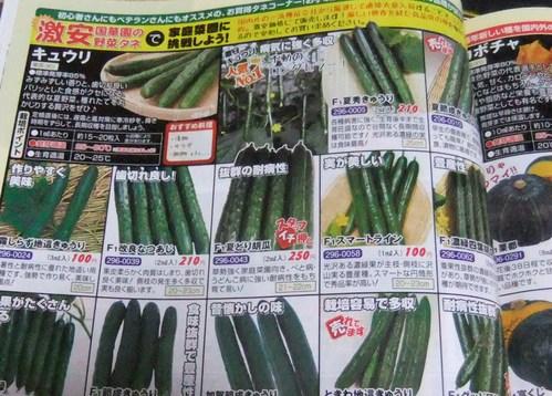 野菜の種,,,,_b0137932_2146956.jpg