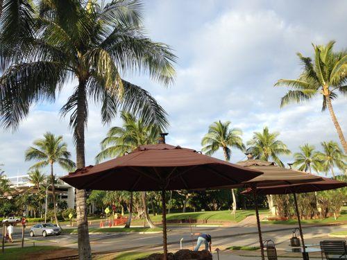 2014年1月 ハワイ女子旅 ② アサイボウル@Island Vintage Coffee_e0271143_18242586.jpg