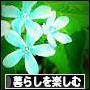 d0026872_19331549.jpg