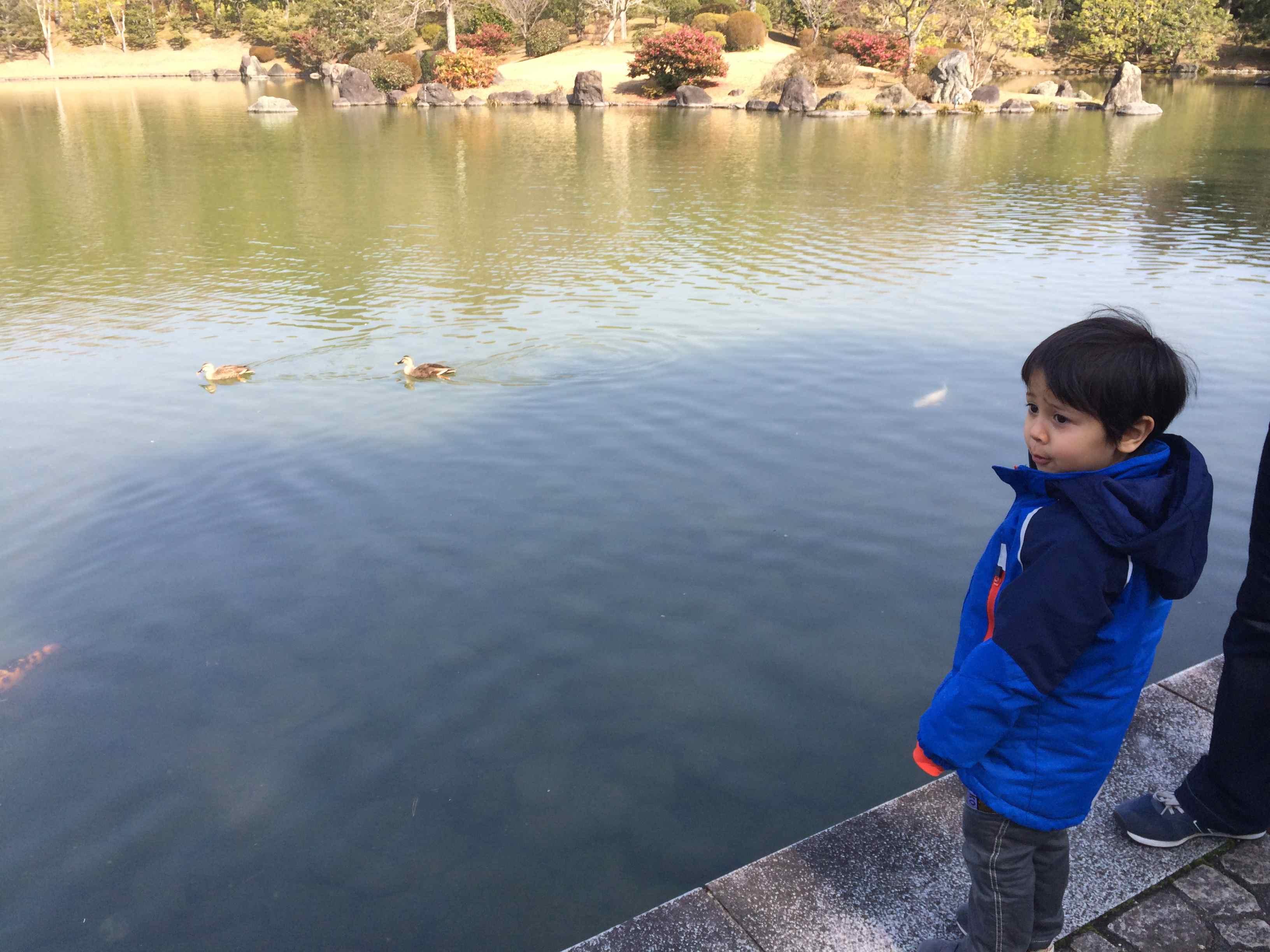 日本庭園_b0061491_21402579.jpg
