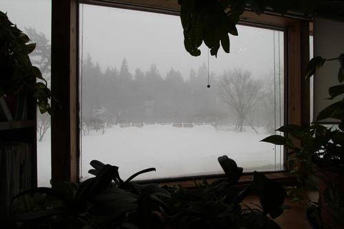 アトリエの窓の表面温度と結露_e0054299_1350351.jpg