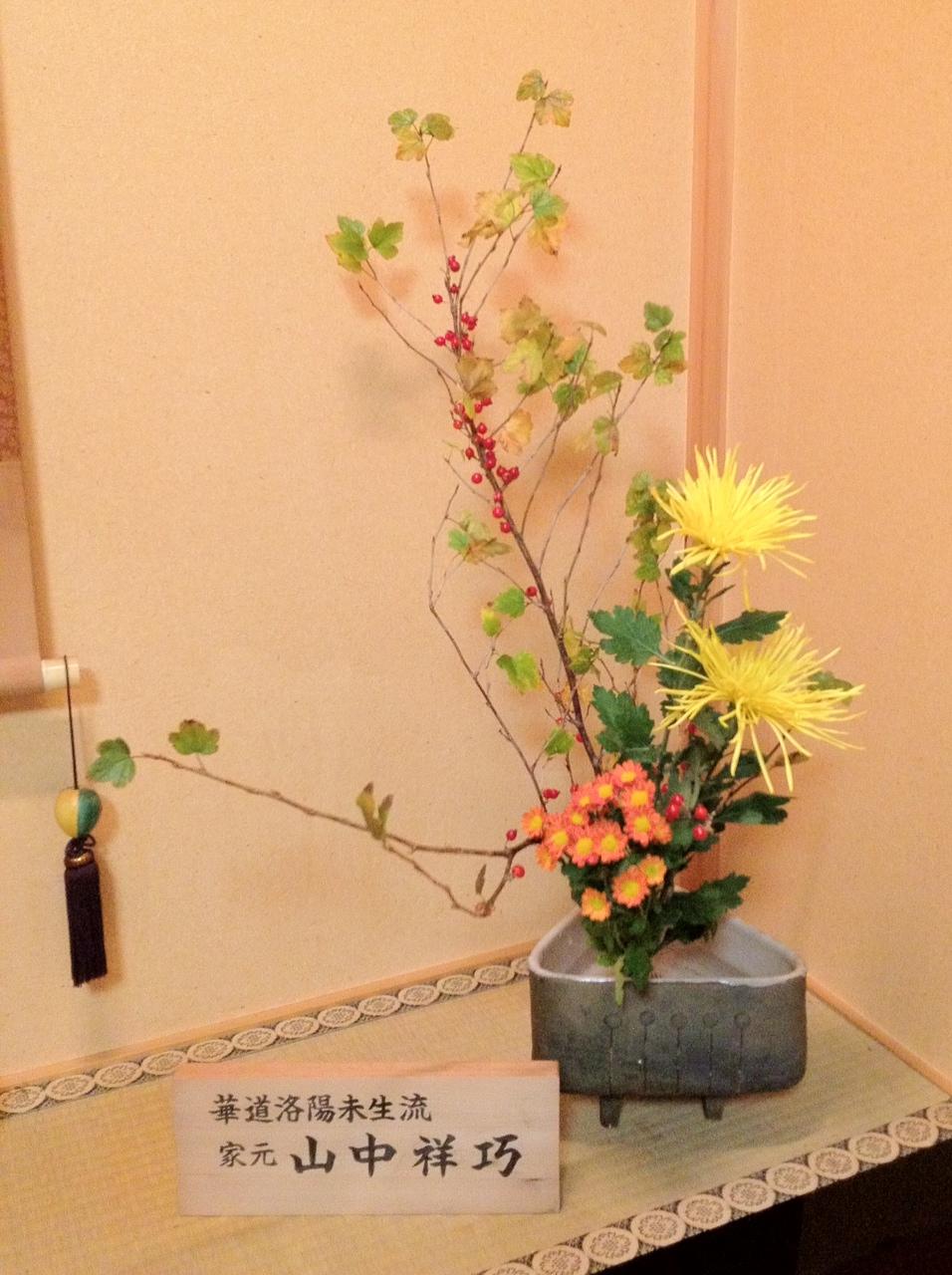 サンザシ、菊、野菊の自由花_b0248803_22484076.jpg