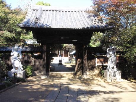 日吉本町〜高田を訪ねて_b0228416_11260703.jpg