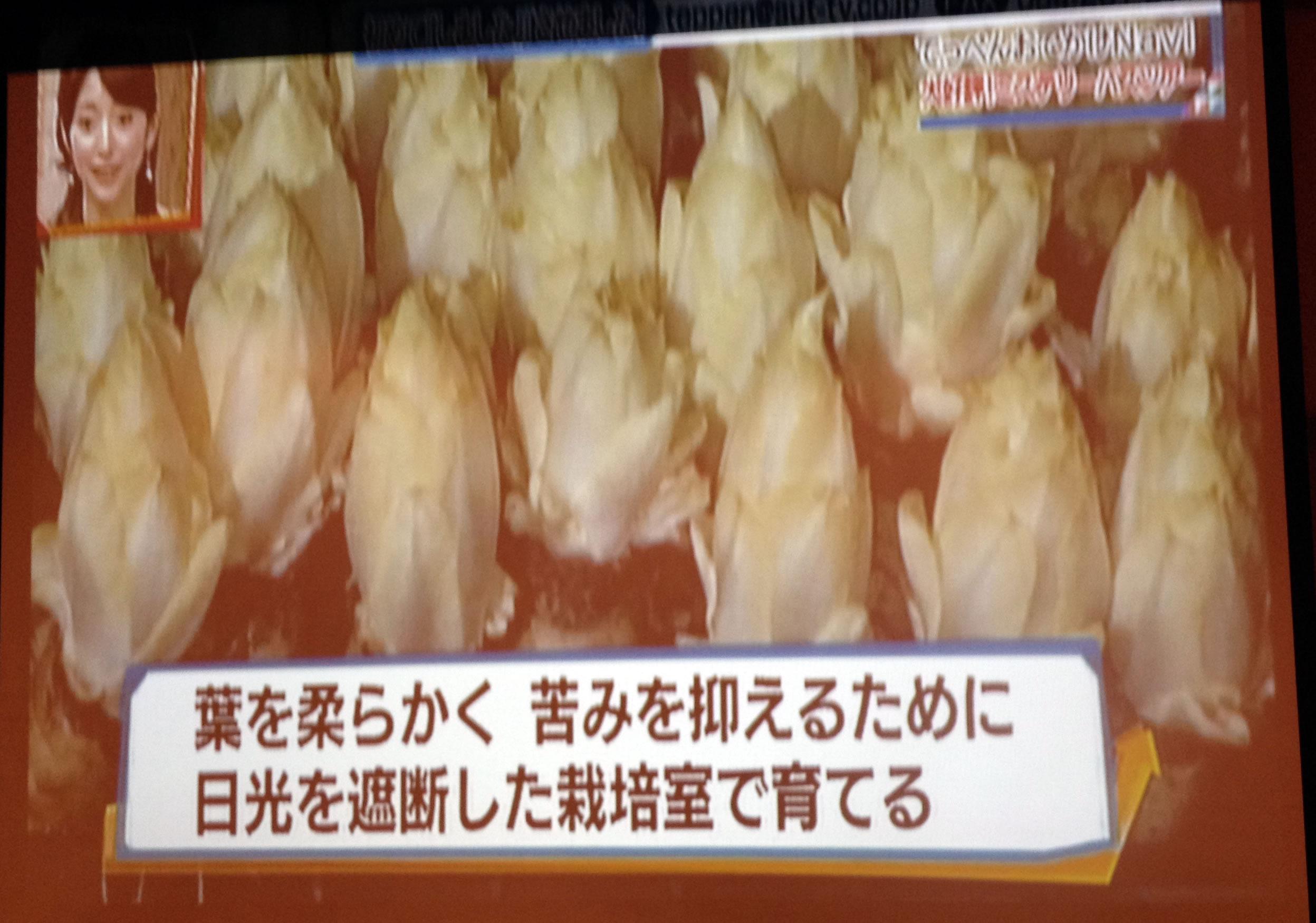てっぺん静岡で放送されました。_d0063218_137249.jpg