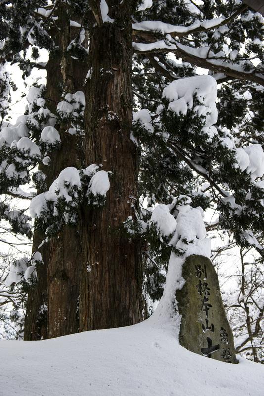 大仙寺参道 最終_d0246136_22314546.jpg