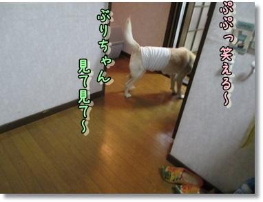 b0151748_12224450.jpg