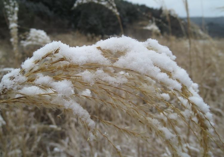 今期一番の寒さ_d0231263_22585357.jpg