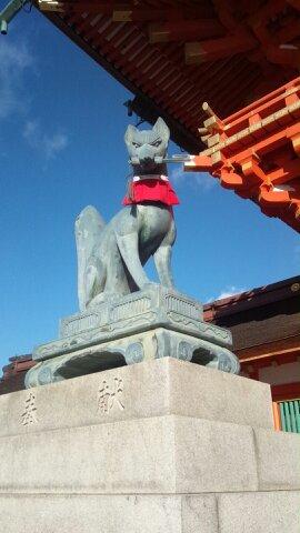 京都出張 伏見稲荷大社_d0230676_17571529.jpg