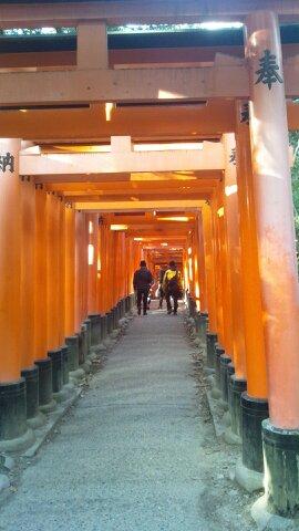 京都出張 伏見稲荷大社_d0230676_1834776.jpg