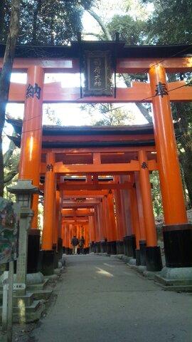 京都出張 伏見稲荷大社_d0230676_184215.jpg