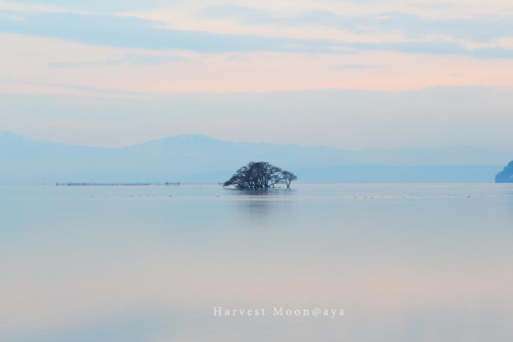 静かなる湖畔_b0208495_2246181.jpg