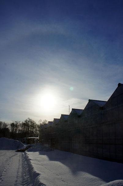 雪まつり_f0160407_5121646.jpg