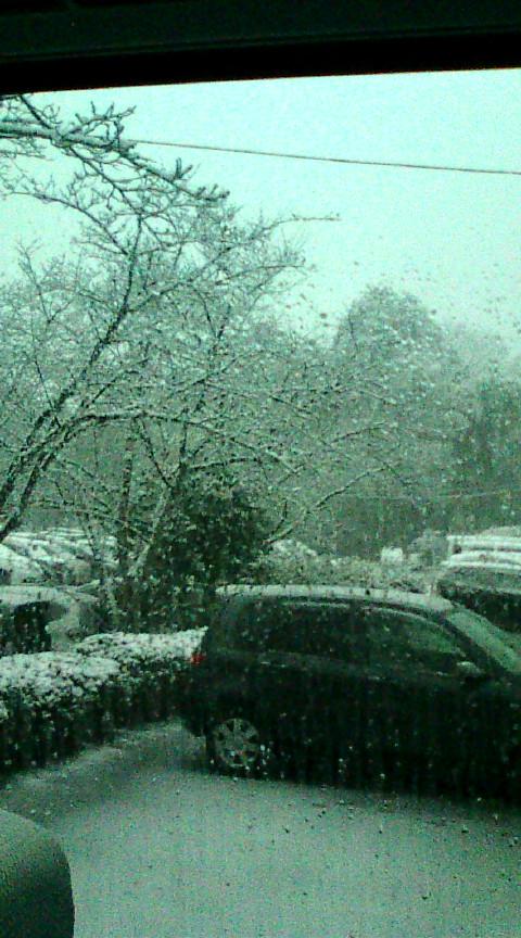 【大雪になりそうです】_e0094315_1783612.jpg