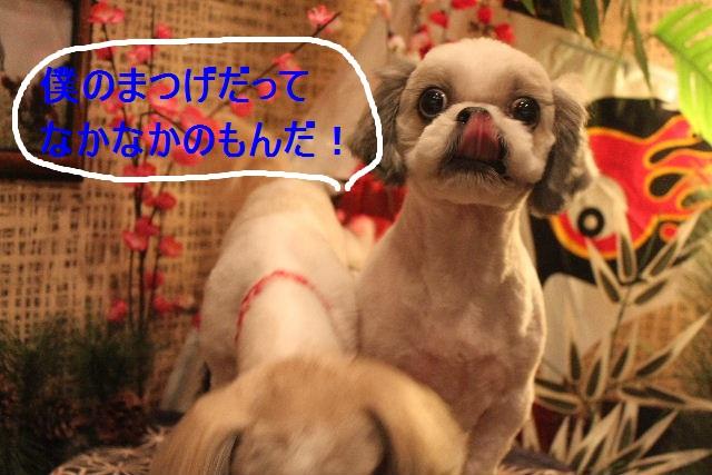 ばっさり!!_b0130018_031456.jpg