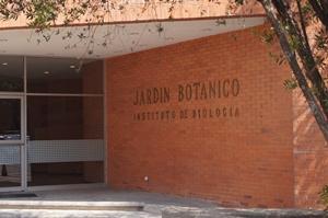 UNAM(メキシコ自治大学)の植物園へ (2)_a0254243_1145951.jpg