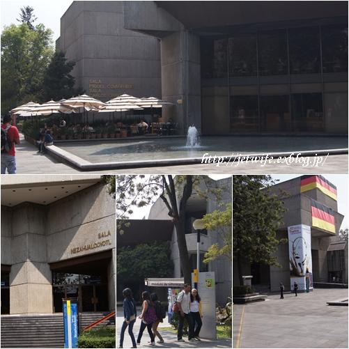 UNAM(メキシコ自治大学)の植物園へ (2)_a0254243_1175249.jpg