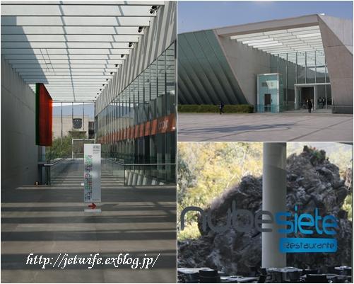 UNAM(メキシコ自治大学)の植物園へ (2)_a0254243_118323.jpg