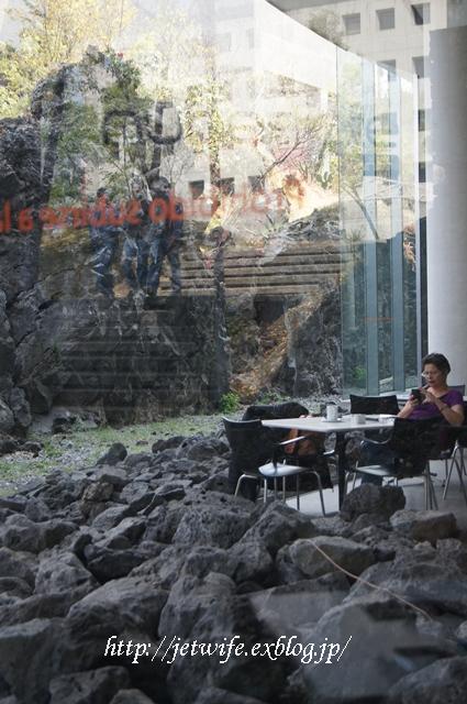 UNAM(メキシコ自治大学)の植物園へ (2)_a0254243_1192047.jpg
