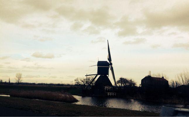 ヨーロッパ買い付け オランダ編其の2と買い付けの総評_f0226051_146158.jpg
