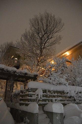 ここは雪国_c0124100_2332448.jpg