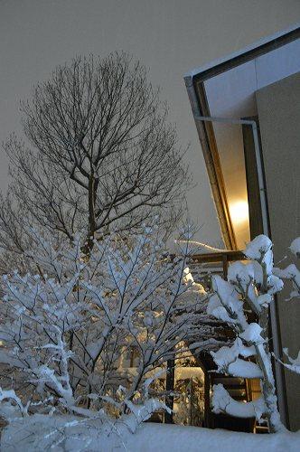ここは雪国_c0124100_23332725.jpg